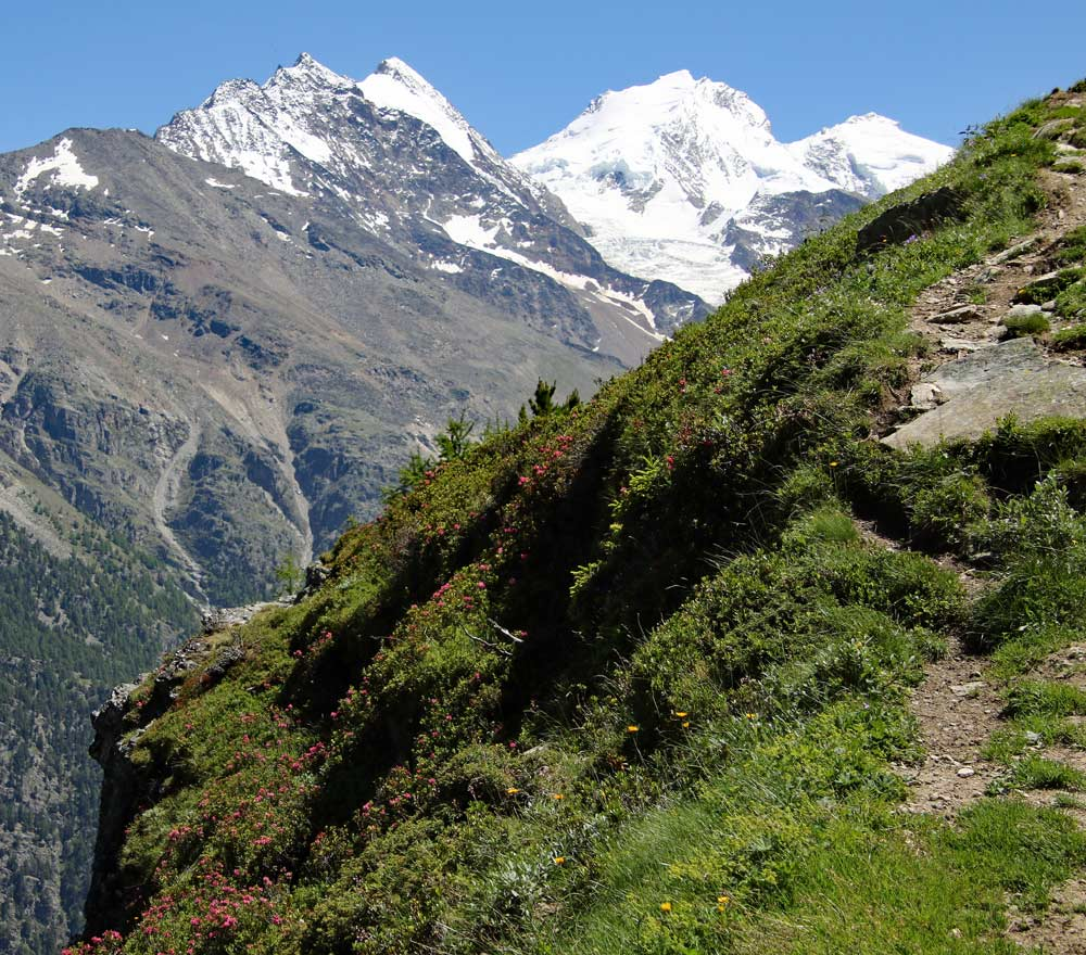 Photo the Hohberghorn, Dom, and Täschhorn of the Barrhorn hike and Topali hut trail from St Niklaus, Wallis, Switzerland