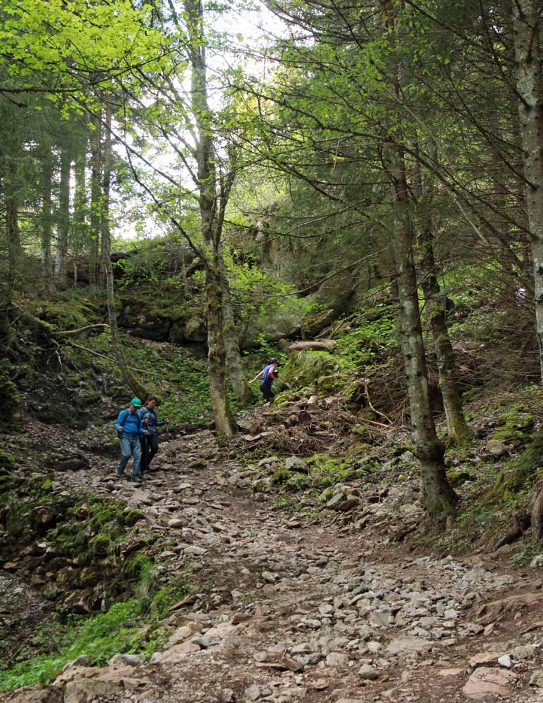 Photo of Le Flon to Lac de Taney hike trail, Valais/Wallis   Hiking in Switzerland