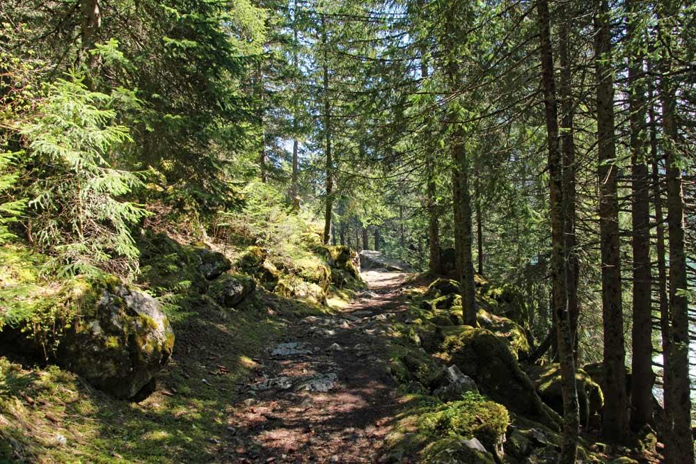 Photo of hiking trail around Lac de Tanay, Valais/Wallis   Hiking in Switzerland