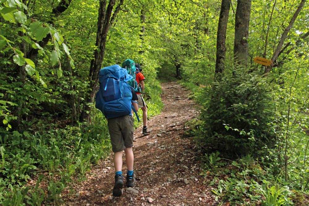 Photo of hiking trail from Le Flon to Lac de Taney, Valais/Wallis   Hiking in Switzerland